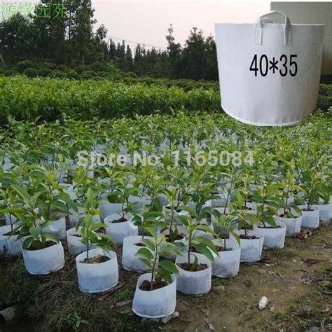 free shipping non woven planting bag home gardening
