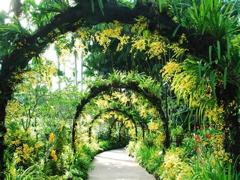 singapore botanic gardens     tanglin singapore