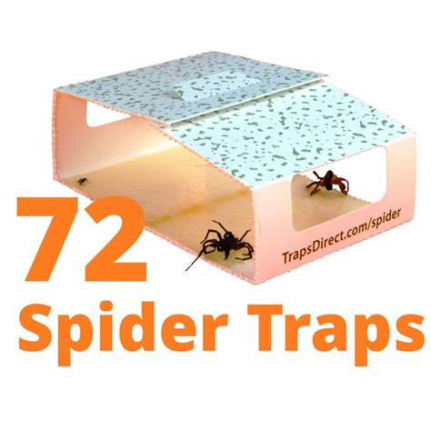simple green spider trap revised design still safe for family and pets always pesticide free