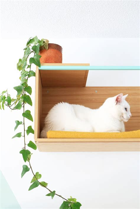 25 best ideas about cat shelves on cat wall