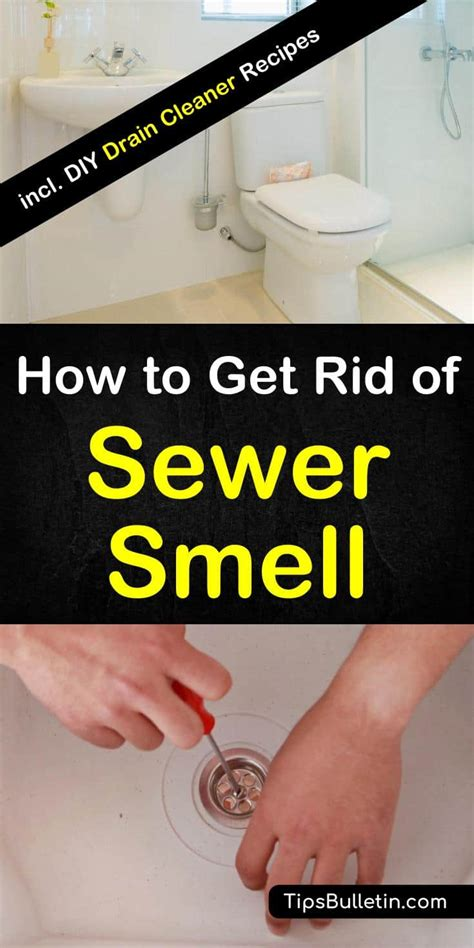 how to get rid of house odors how to get rid of sewer smell in your house