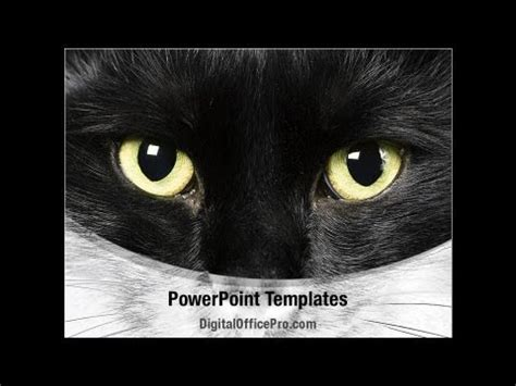 Black Cat Powerpoint Template Backgrounds Cat Powerpoint Template