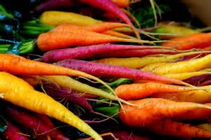 carrot colors will colorful carrots get a cult following earth eats