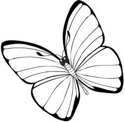 coloring page butterfly butterfly coloring pages free printable pictures