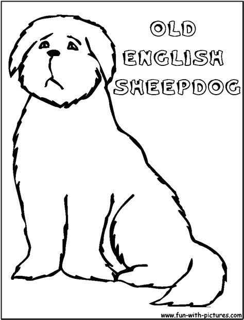 sheep dog coloring page oldenglishsheepdog coloring page
