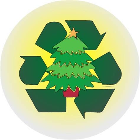 recycle your christmas tree green coast rubbish