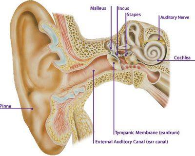 complications  ears diabetes total control