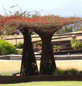 Arch Shaped Trellis Ewa In The Garden 12 Ideas For Garden Arch Trellis
