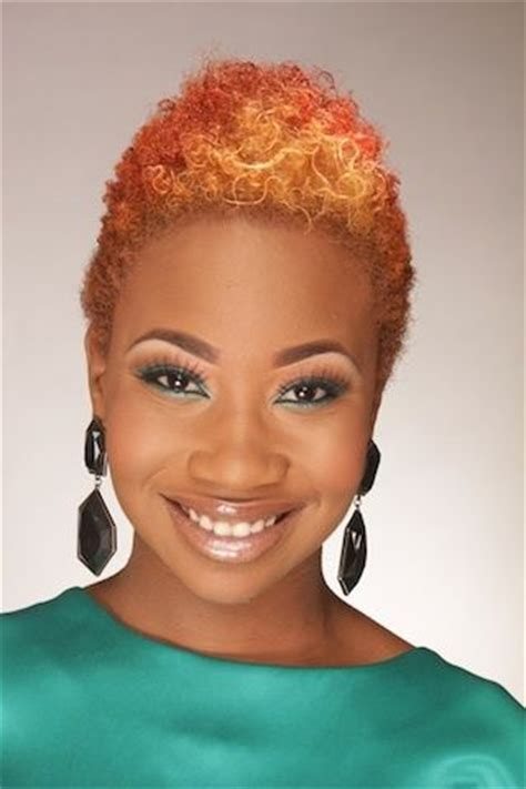 african american scrunch hair styles 17 best images about a splash of color afro hair on