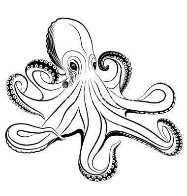 tattoo online zeichnen lassen octopus vector 260919 by flanker d on vectorstock 174 bar