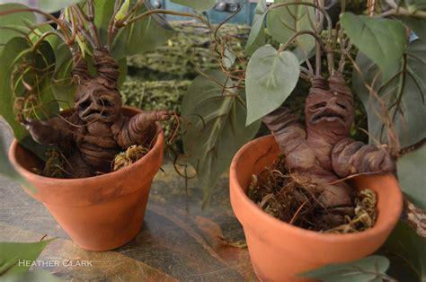 harry potter mandrake plants