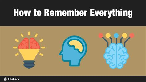 10 Bodies To Remember When Working Out by How To Remember Everything Without Being Working