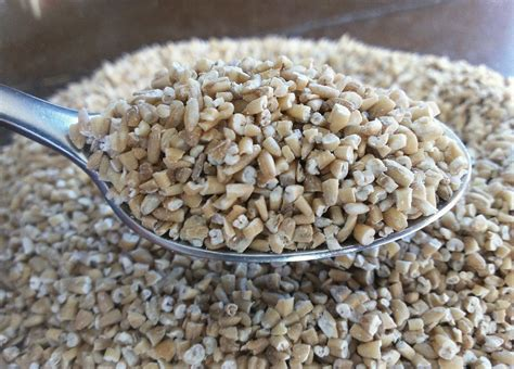 whole grains or steel cut oats steel cut oats