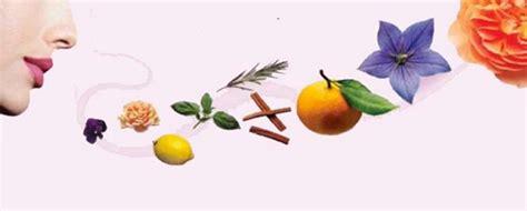 odeur d 礬gout dans la l odeur c est quoi toutelaculturel odeur c est quoi