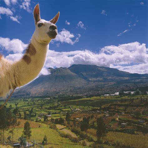 Travel to Ecuador   Jetsetz.com