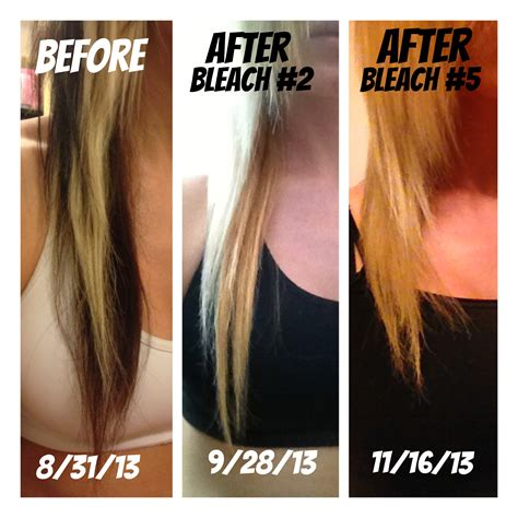 best colour to use on bleached hair to give low lights bleached hair damage www pixshark com images galleries