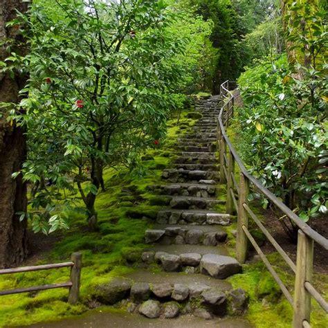 steep backyard 25 best steep backyard ideas on pinterest sloped garden