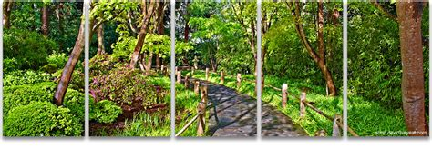 Define Botanical Garden Garden Stroll San Francisco Botanical Garden 5 Panel Artwork David Balyeat Photography Store