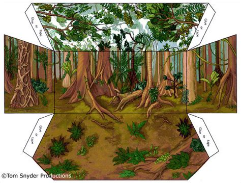 Printable Forest Diorama | 8 best images of printable diorama backgrounds