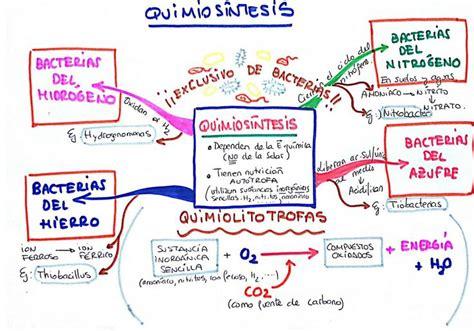 imagenes de mapas mentales hermosos quimios 237 ntesis mis esquemas y mapas mentales pinterest