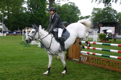 scow landing olympic horse jumping landing