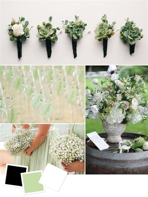 color combination for black best 25 pale green weddings ideas on