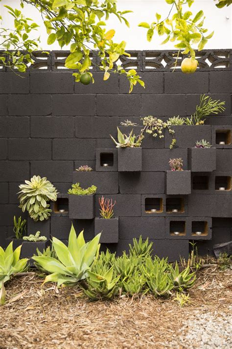 succulent garden wall best 25 outdoor walls ideas on privacy
