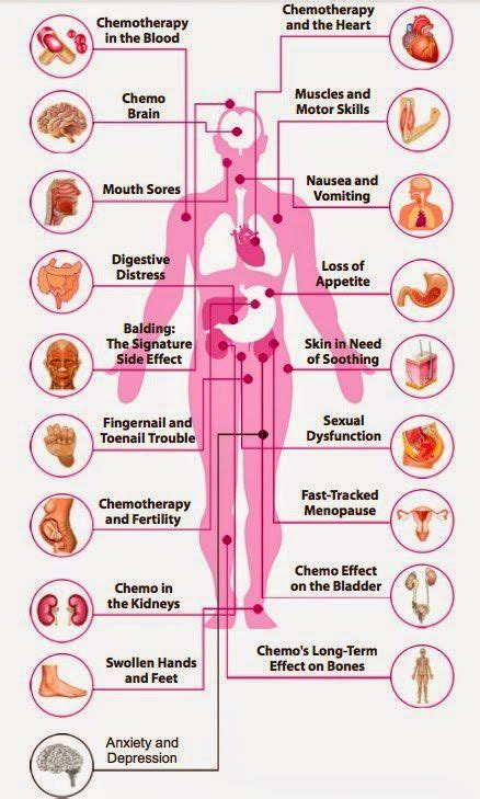 How To Detox Dead Cancer Cells From Chemo And Radiation by 59 Best Illness Treatment Images On Cancer