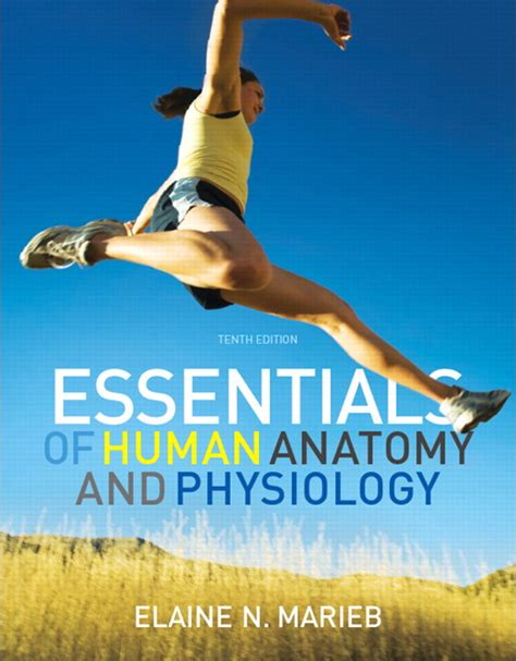 essentials of human anatomy physiology plus mastering a p with pearson etext access card package 12th edition marieb essentials of human anatomy physiology plus