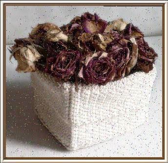 seccare fiori come seccare i fiori fiori secchi essiccazione dei fiori