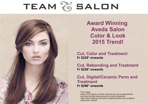 jem new year promotion team salon aveda s new year promotion jem 174