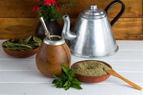 what is matte tea 10 health benefits of yerba mate tea better than coffee