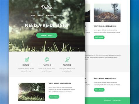 psd to email template delize email psd template freebiesbug