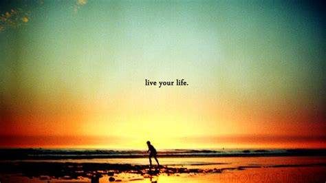 it can buy me a boat live nikant vohra live your life before life becomes lifeless