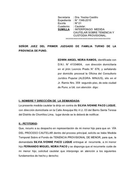 ejemplo de carta de custodia temporal tenencia provisional