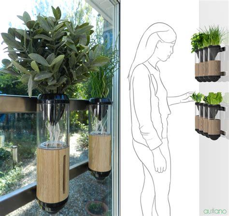 il giardino idroponico orto in casa come coltivare in casa frutta verdura e altro
