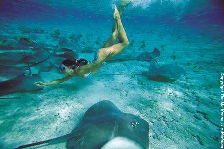 cialis soft paras hinta bora bora photo gallery the tahiti traveler