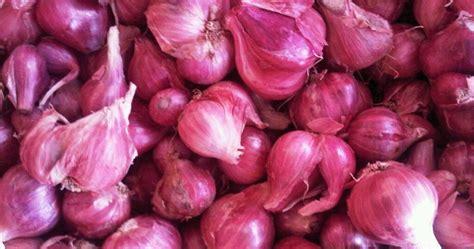 3 Macam Obat Mata macam obat tradisional beberapa khasiat bawang merah