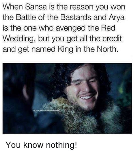 The King In The North Meme - when sansa is the reason you won the battle of the