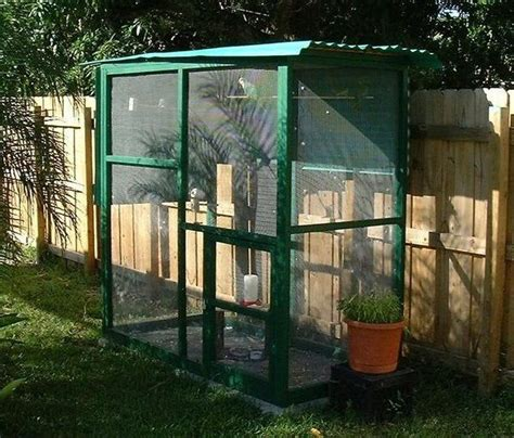 backyard bird aviary build your own walk in bird aviary aviary diy for the