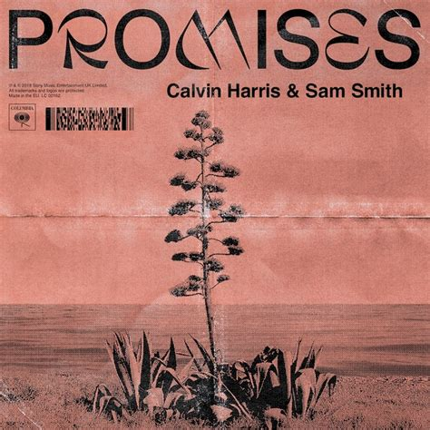 sam smith no promises lyrics calvin harris and sam smith promises ellodance