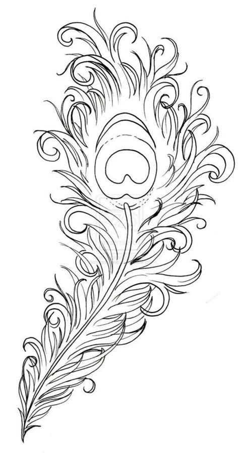 peacock drawing outline drawing gallery peacock drawing