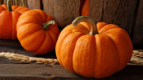 pumpkins wallpaper hd pumpkin wallpapers wallpaper cave