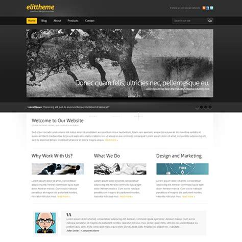 Blackboard Wordpress Theme Wp Corporate Wordpress Themes Templatesold Com Blackboard Website Templates