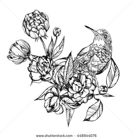bird drawing stock images royalty free images amp vectors