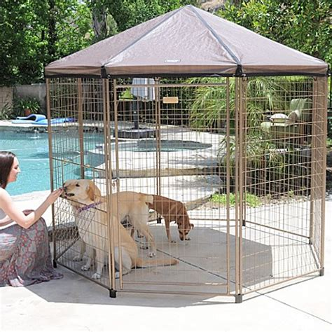 pet gazebo advantek 7 5 foot quot pavilion quot pet gazebo www