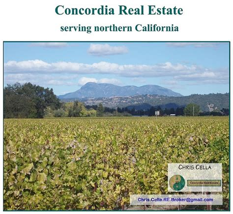 northern california real estate chris cella