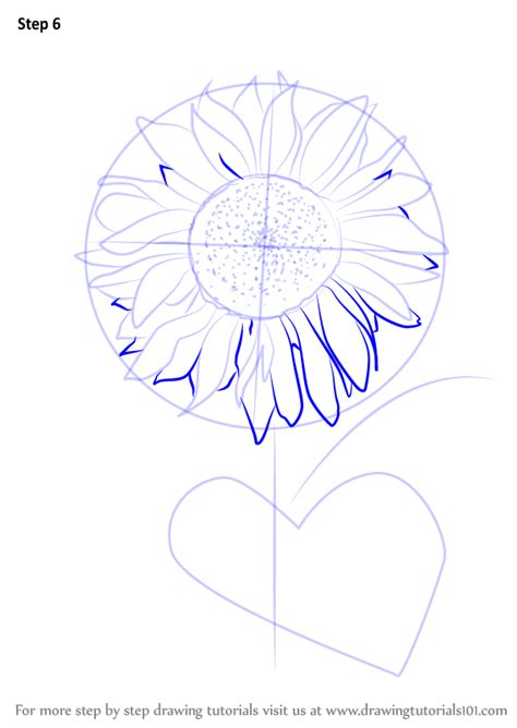 learn   draw sunflower plant sunflower step  step