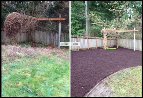 backyard cleaning services gallery landscape contractor gig harbor garland