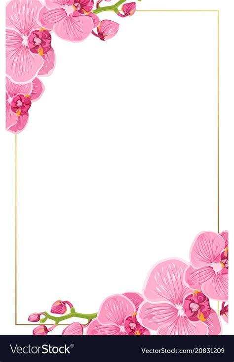 pink orchid flowers border frame template card vector